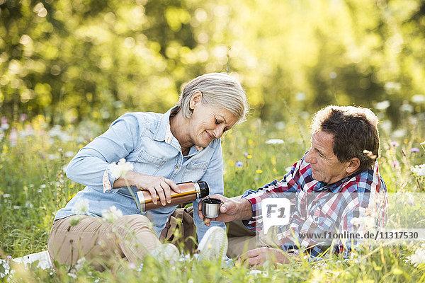 Seniorenpaar beim Picknick auf einer Wiese