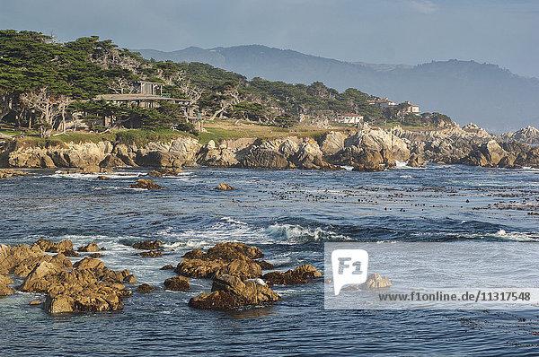 USA  California  Coast  Monterey Peninsula  scenic coastline along 17 Mile drive