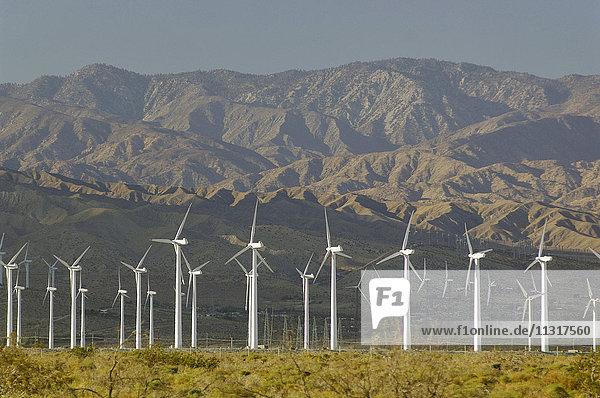 SA  California  SOCAL  Palm Desert  Palm Springs  wind mill  energy  Mojave  desert