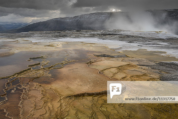 USA  Rocky Mountains  Wyoming  Yellowstone  National Park  UNESCO  World Heritage  Mammoth Hot Springs
