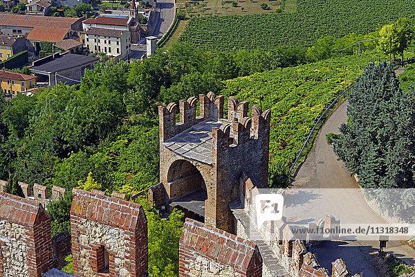 Scalierburg  Castello Medievale  town  Soave