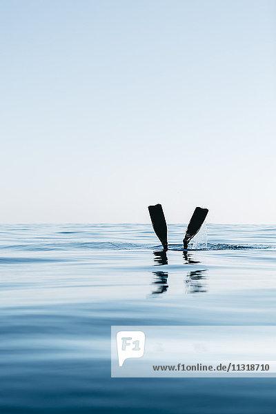 Mann beim Freitauchen im Meer