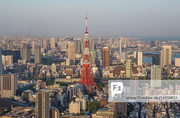 Japan  Tokyo City  Minato Ku District  Tokyo Tower