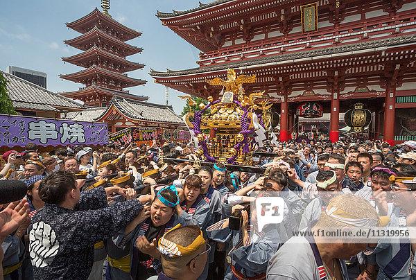 Japan  Tokyo City  Asakusa District  Sanja Matsuri Festival
