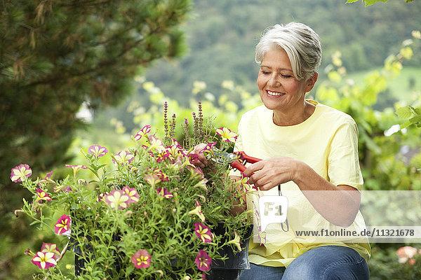 Reife Frau beim Schneiden von Blumen mit einer Schneidemaschine