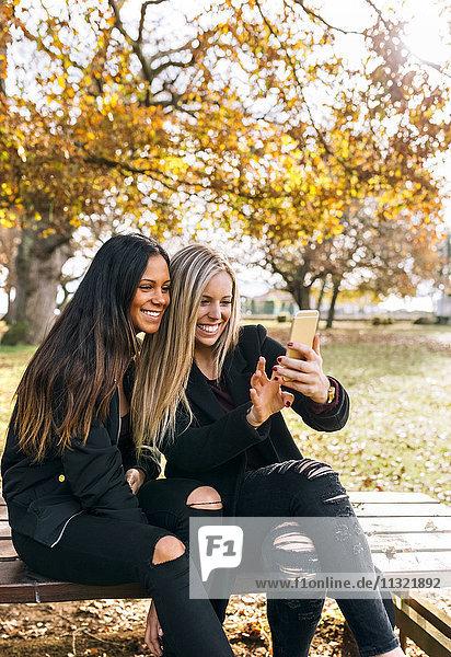 Zwei lächelnde junge Frauen auf der Parkbank beim Blick aufs Handy