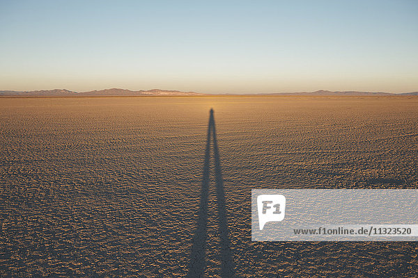 Man standing on Black Rock Desert Playa at dusk  casting long shadow  Nevada