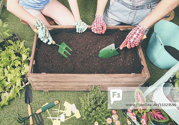 Paar  das den Boden vorbereitet  um Gemüse in den Container ihres Stadtgartens zu pflanzen.