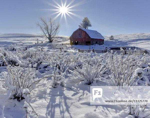 agriculture and rolling hills in Washington State in winter