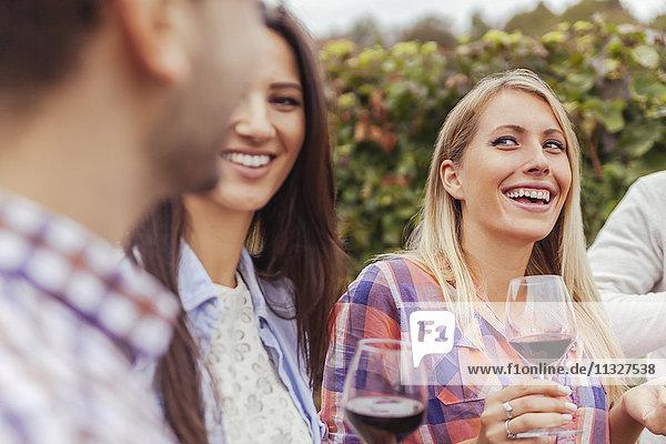 Freunde in einem Weinberg mit Gläsern Rotwein