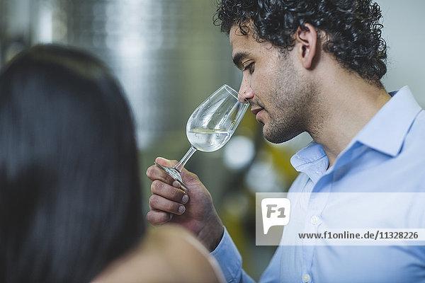 Junger Mann riecht Gin bei der Verkostung in der Brennerei