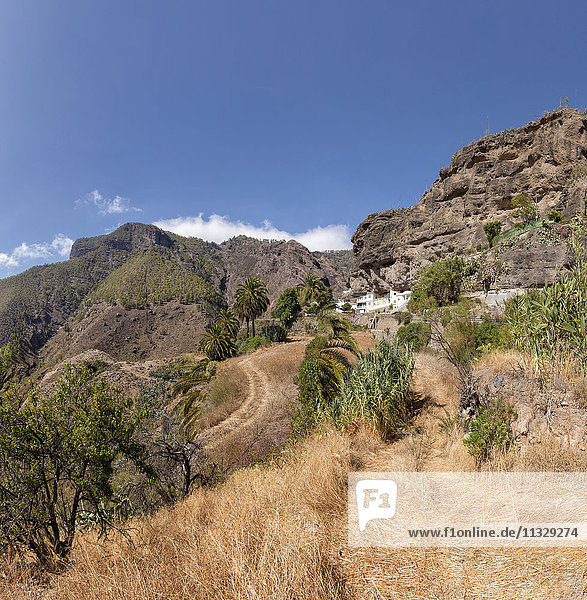 Spain  Europe  Artenara  Gran Canaria  Canary Islands  Cave houses  house  field  meadow  trees  summer  mountains  hills