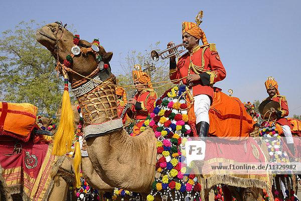 desert festival and camels in Jaisalmer  Rajasthan