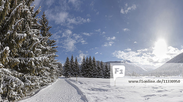 landscape near Davos in winter  Grisons  Switzerland