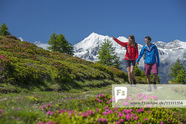 Couple hiking near Gibidum in Valais