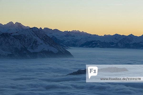 Bürgenstock mountgain in sea of fog  in Central Switzerland