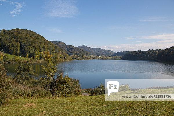 Türlersee lake in the canton of Zurich  Switzerland