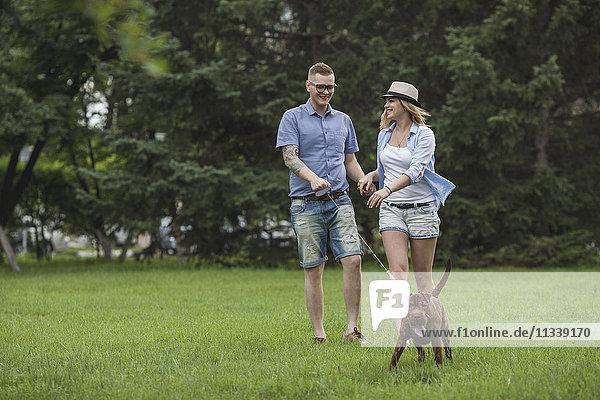 Ein junges Paar  das mit seinem Shar-pei/Staffordshire Terrier im Park spazieren geht.