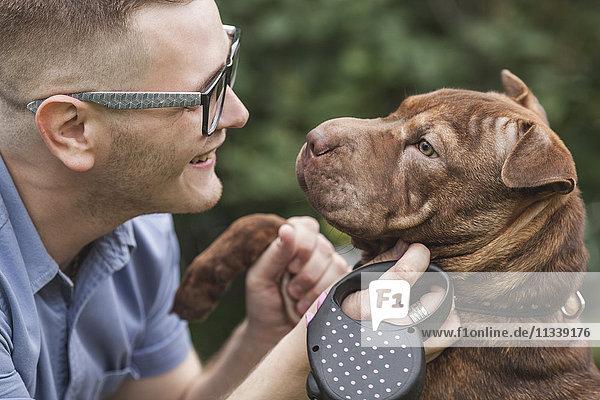 Ein junger Mann lächelt seinen Staffordshire Terrier/Shar Pei Hund an  Nahaufnahme