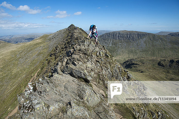 A woman on top of Striding Edge facing towards Ullswater in the English Lake District  Lake District National Park  Cumbria  England  United Kingdom  Europe