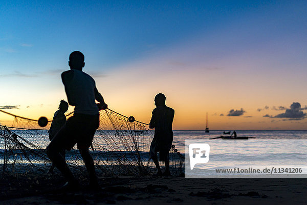 Seine net fishermen haul in a catch of fish in Castara Bay on the Caribbean island of Tobago  Trinidad and Tobago  West Indies  Caribbean  Central America