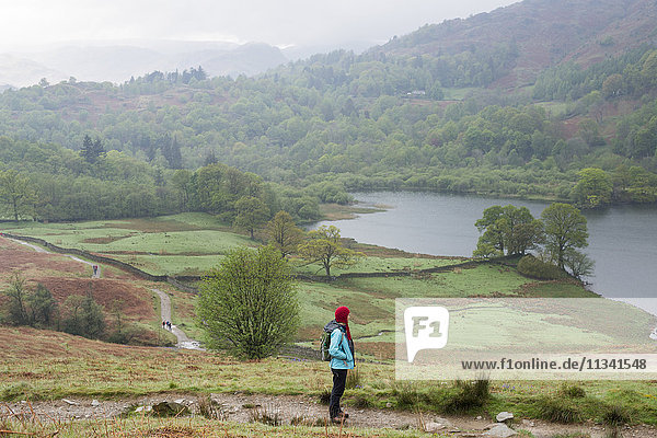 A woman looks out over Rydal Water near Grasmere  Lake District National Park  Cumbria  England  United Kingdom  Europe