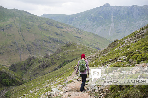 A woman walking down into Great Langdale from Crinkle Craggs with a view of Stickle Pike in the distance  Lake District National Park  Cumbria  England  United Kingdom  Europe