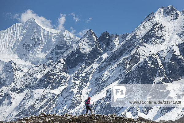 Trekking in the Langtang Valley with a view of Ganchempo in the distance  Langtang Region  Himalayas  Nepal  Asia