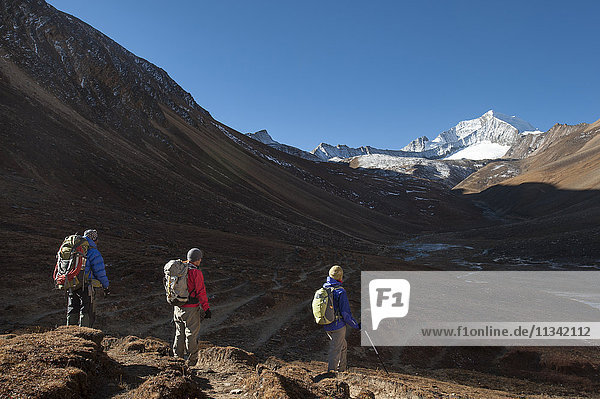 Trekking towards the Kagmara La pass  in the Kagmara valley in the remote Dolpa region  Himalayas  Nepal  Asia