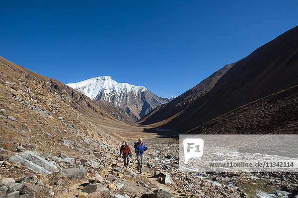 Trekking towards the Kagmara La pass  in the Kagmara valley in the remote Dolpa region  Himalayas  Nepal  Asia