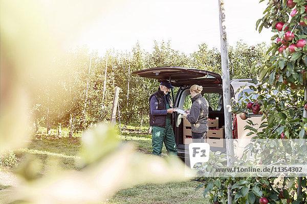Landwirt und Kunde hinter dem Van im Apfelgarten