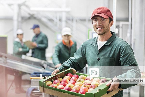Porträt eines lächelnden Arbeiters  der eine Kiste mit Äpfeln in einem Lebensmittelbetrieb hält.