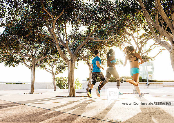 Mann und zwei junge Frauen trainieren  laufen entlang der Küste  in der Innenstadt von San Diego  Kalifornien  USA