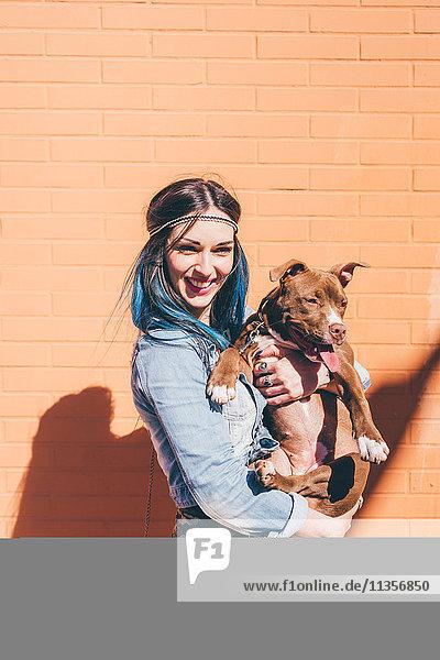 Junge Frau mit tauchgefärbten blauen Haaren hält Pitbull vor oranger Wand