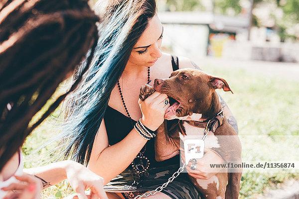 Junge Frauen mit gefärbten blauen Haaren spielen mit Pitbull-Terrier im Stadtpark