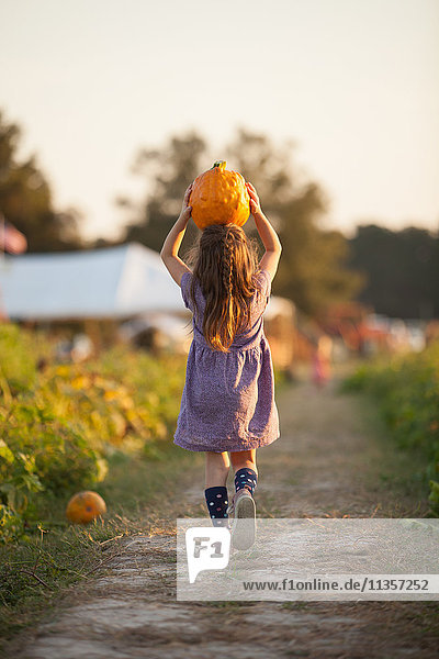 Junges Mädchen geht auf einem ländlichen Pfad  Kürbis auf dem Kopf tragend  Rückansicht