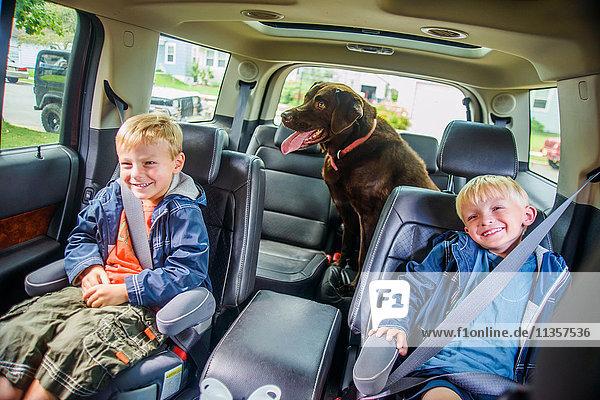 Zwillingsbrüder sitzen hinten im Fahrzeug  schelmische Ausdrücke  Haushund sitzt hinten