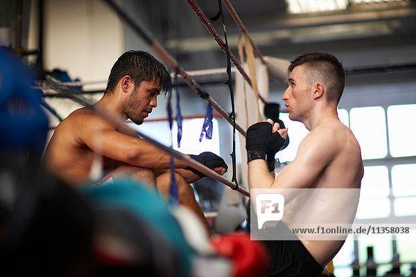 Boxer trainiert mit Sparringspartner