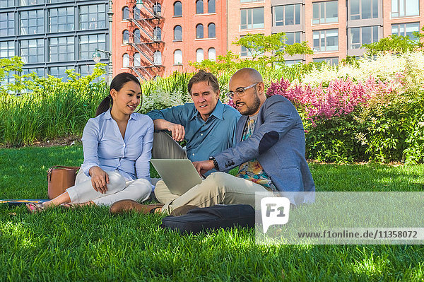 Business men and women sitting outdoors on grass  using laptop