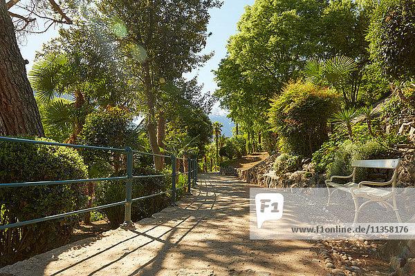 Leere Bank auf ländlichem Weg  Meran  Südtirol  Italien