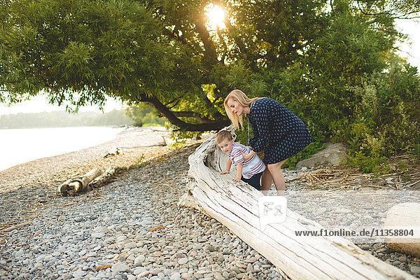 Boy with mother climbing onto tree trunk at Lake Ontario  Oshawa  Canada