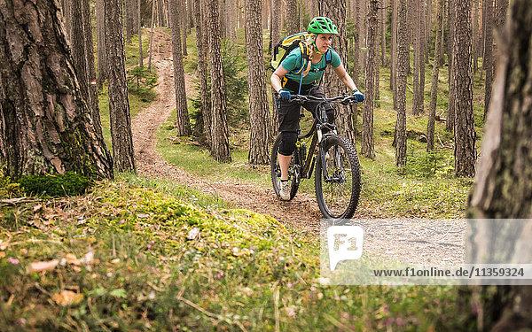 Mountainbike-Frau im Wald  Bozen  Südtirol  Italien
