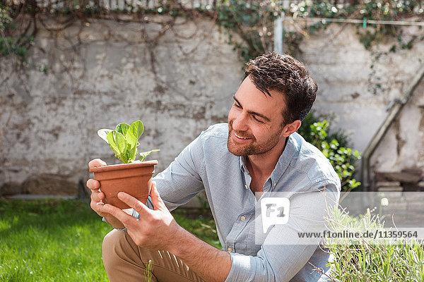 Mann im Garten bei der Pflanzenpflege