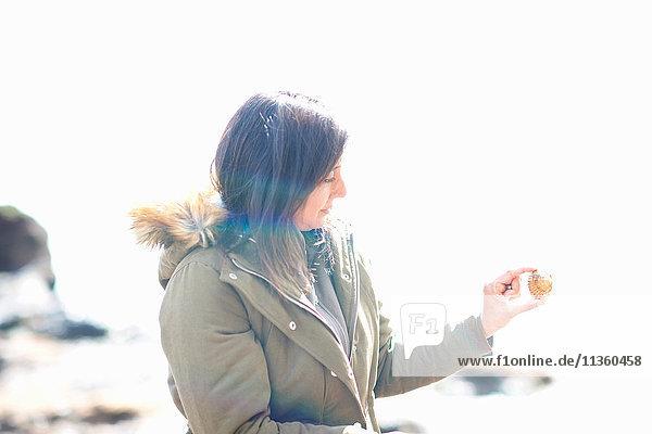 Reife Frau am Strand mit Muschel in der Hand  Devon  UK