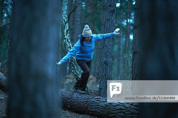 Wanderin balanciert auf umgestürztem Baum im Wald