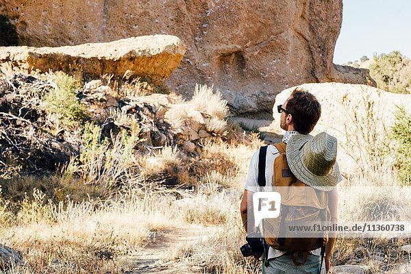 Rückansicht eines Wanderers  der zur Felswand hinaufschaut  Malibu Canyon  Kalifornien  USA