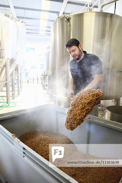 Worker in brewery  emptying grains from mash tun