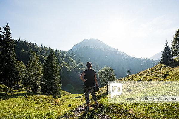 Rückansicht eines am Hang stehenden Mannes mit Blick in die Ferne  Passo Maniva  Italien
