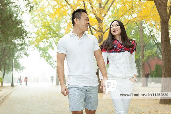 Junges Paar schlendert im Herbst in einem von Bäumen gesäumten Park  Peking  China
