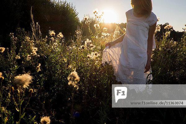 Frau auf Wildblumenwiese  Ural  Russland